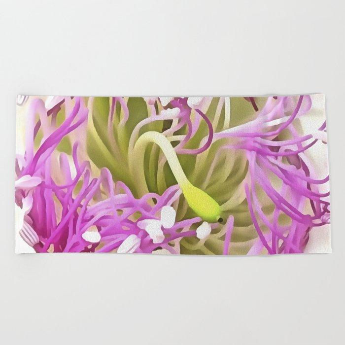 Caper Flower Blossom Beach Towel