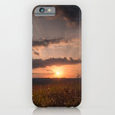 In the middle of the Summer Slim Case iPhone 6s