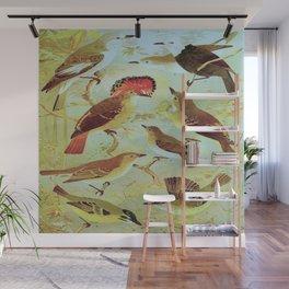 Amazonian Birds by Göldi & Emil August Belem Brazil Colorful Tropical Birds Scientific Illustration Wall Mural
