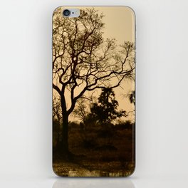 Tree and a Lake at Sunset iPhone Skin