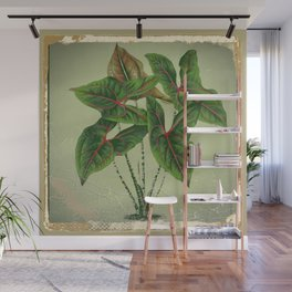 Grungy antique style  Botanical Art Wall Mural