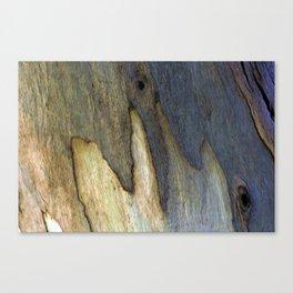 Eucalyptus Tree Bark 7 Canvas Print