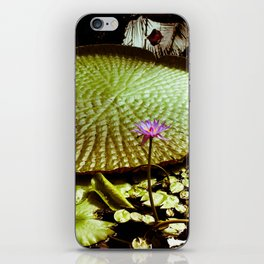 Life Upon A Lily Pad iPhone Skin