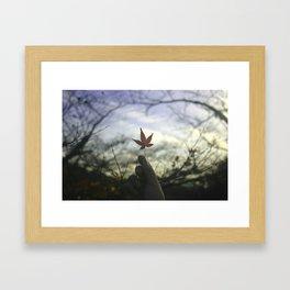 Kyoto Maple Framed Art Print
