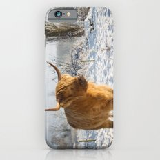 Highland Cow in the snow iPhone 6s Slim Case