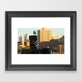 Brooklyn Gull Framed Art Print