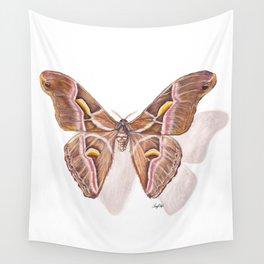 Pinned Muse - Atlas Moth Wall Tapestry