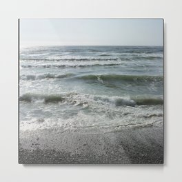 Sand Dollar Beach Metal Print