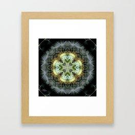 Dandelion Kaleidoscope Mandala, Scanography Art Framed Art Print