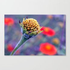 Here we are Canvas Print