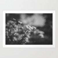 Black & White (2) Art Print