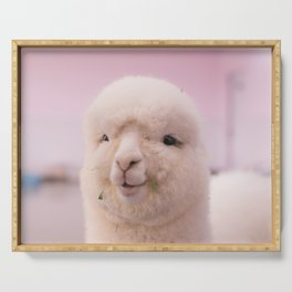 WHITE SHEEP IN CLOSE UP PHOTOGRAPHY Serving Tray