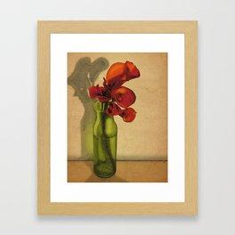 Calla lilies in bloom Framed Art Print
