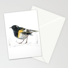 Hihi, New Zealand native Stitchbird Stationery Cards