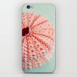 sea urchins series no 1 iPhone Skin