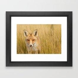 The Catcher in the Grass Framed Art Print