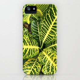Verde Planta llena de amor iPhone Case