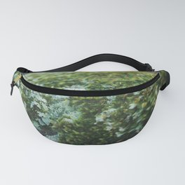 Moss Sporophytes and Foliose Lichen Fanny Pack