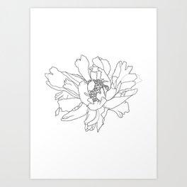 Single flower botanical illustration - Ruby Art Print