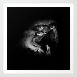 Macaw in Monochrome Art Print