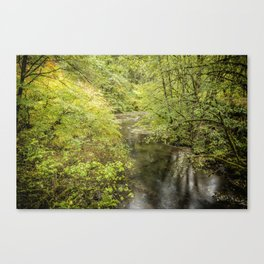 North Fork Silver Creek Canvas Print