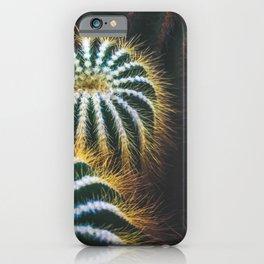 Golden Barrel Cactus iPhone Case