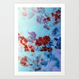 ZEN SUMMER BREEZE Art Print