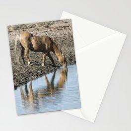 Reflection of a Stallion Stationery Cards