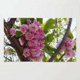 Pink Cluster Rug