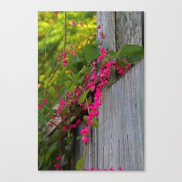 Whiskey Wildflower Canvas Print