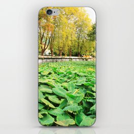 Taro field iPhone Skin