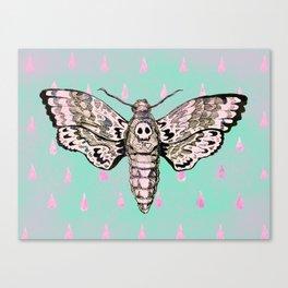 Death's Mark Hawk Moth Canvas Print
