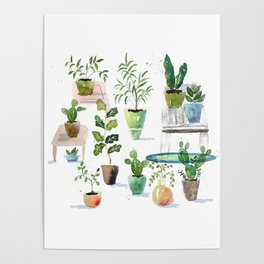 Table Plants Poster