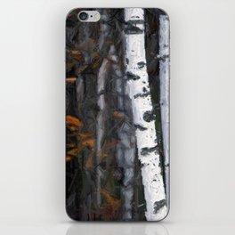 8112 iPhone Skin