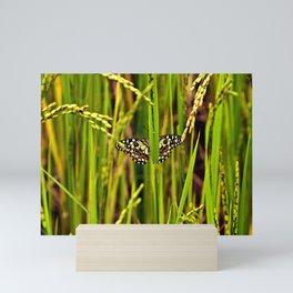Butterfly in rice Mini Art Print