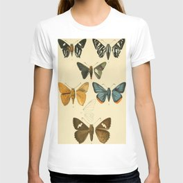 Vintage Moth Illustrations T-shirt