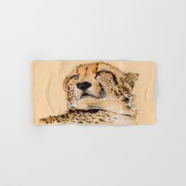 Season of the Big Cat - Cheetah at Rest Hand & Bath Towel