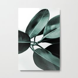 Minimal Rubber Plant Metal Print