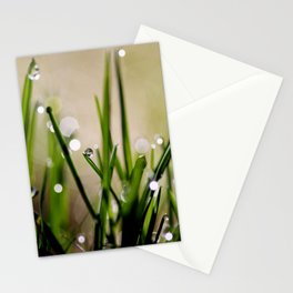 Early Morning Sparkle Stationery Cards