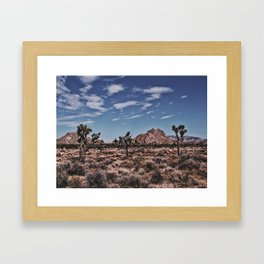 Three Joshua Trees Framed Art Print
