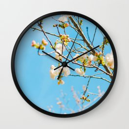 White Blossoms In Spring Against Blue Sky Wall Clock