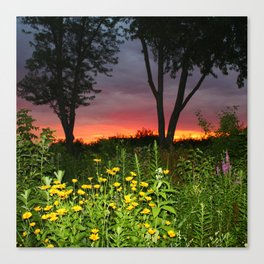 Sunset Over a Wildflower Field Canvas Print