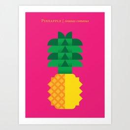 Fruit: Pineapple Art Print