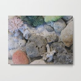 Corals of the Andaman Sea Metal Print