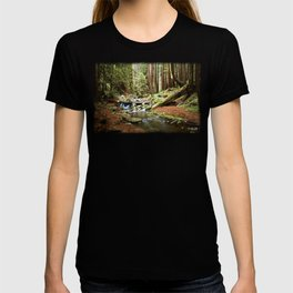 Crystal Stream T-shirt
