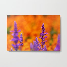 PHOTOGRAPHY / FLOWER 01 Metal Print