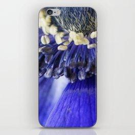 Blue Crown Anemone iPhone Skin