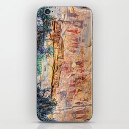 Sego Canyon Indian Petroglyphs And Pictographs iPhone Skin