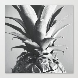 Silver Pineapple Canvas Print