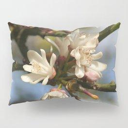 Orange Tree Flowers Pillow Sham